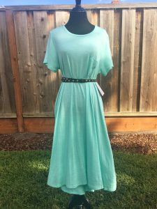 Carly Dress with Belt
